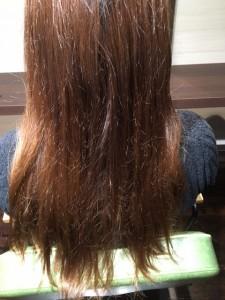髪のダメージやパサつき改善 小山市にあるカットが人気の美容室カルマルーチェです