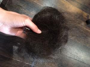 髪も熱中症対策 小山市にあるカットが人気の美容室カルマルーチェ